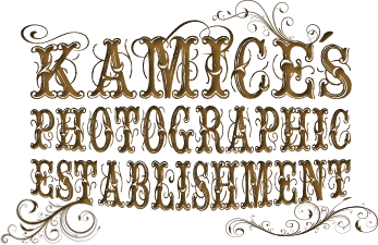 Kamice's Photographic Establishment